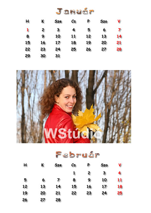Hétlapos naptár