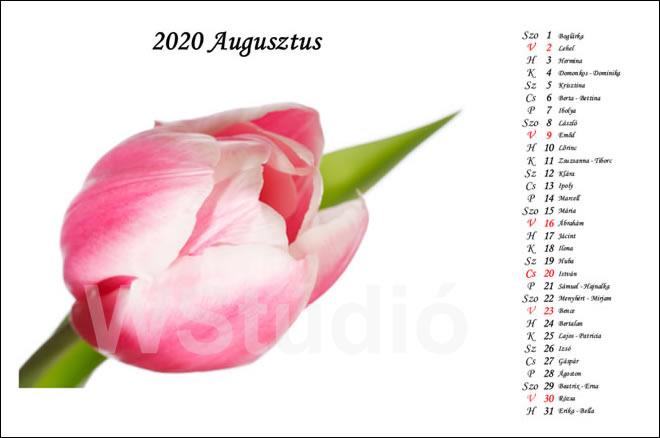 2020 - as fényképes ajándék naptárak
