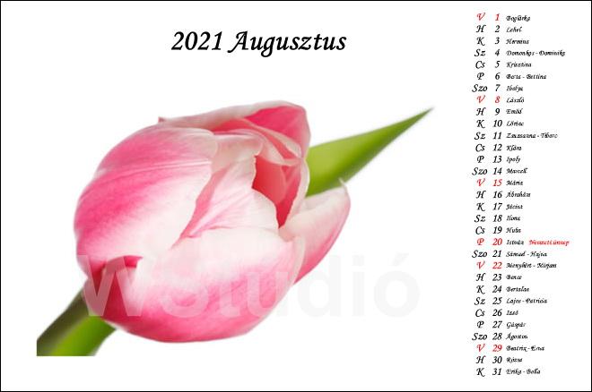 2021 - es fényképes ajándék naptárak